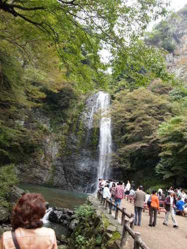 2011 GS会 奈良 033.JPG