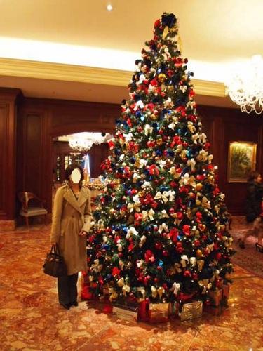 2010 クリスマスツリー 001.JPG