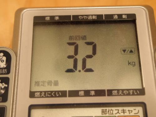2010 体重計 007.JPG