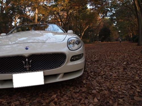2010 Maserati Day 112.JPG