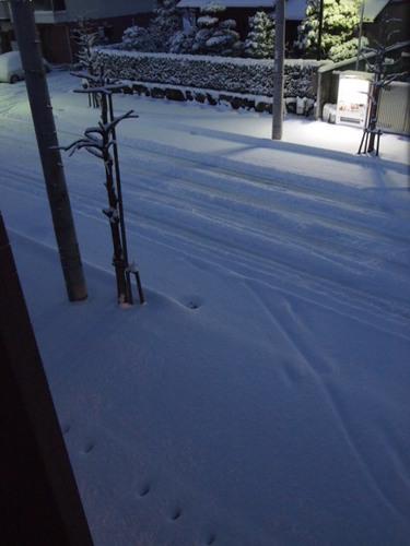 2011 雪 002.JPG